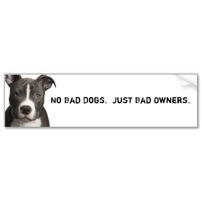 There are no bad dogs, just bad owners