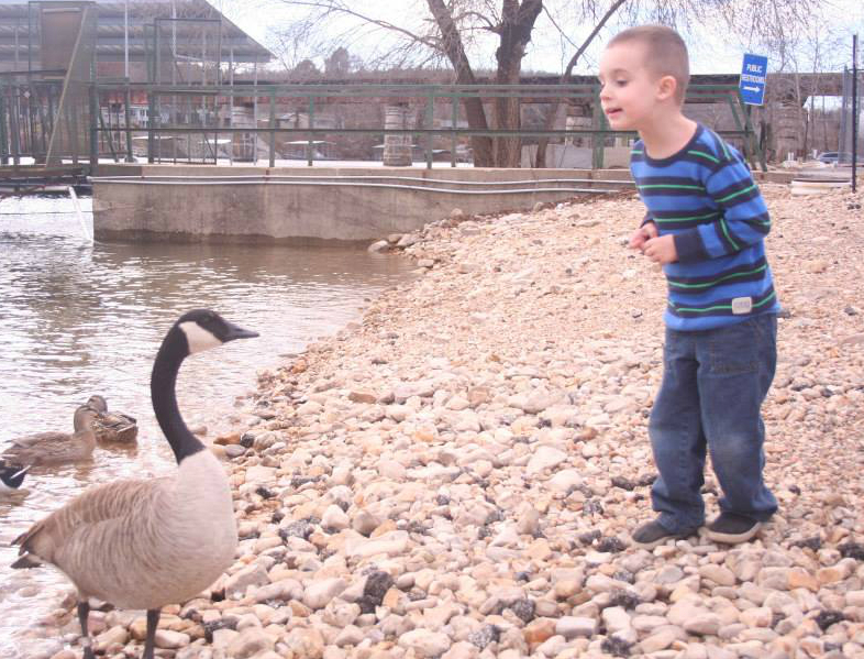 The Goose Whisperer (with pants on, thankfully)