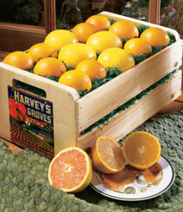 35 lbs grapefruit